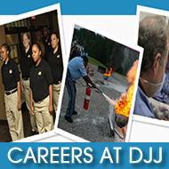 Click here to view 'DJJ Careers'.