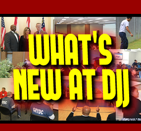 Click here to view 'WHAT`S NEW AT DJJ'.